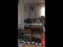 Алина Аверина — Live