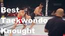 Best Taekwondo Knockouts KO in UFC - MMA Fighter