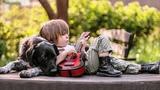 Владимир Качан Собака, гитара и я
