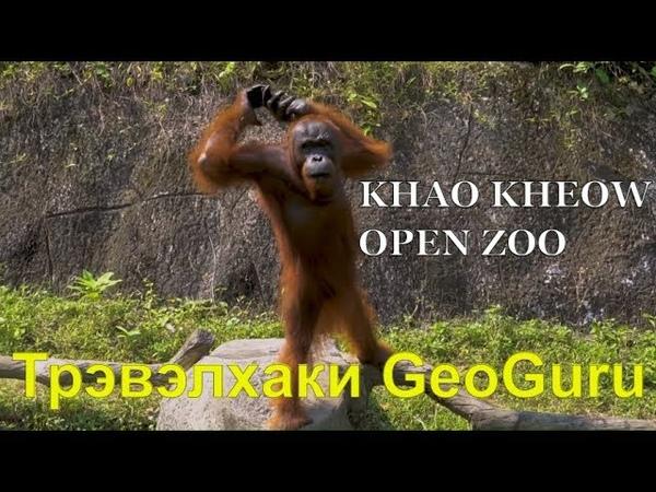 Зоопарк в Паттайе. Открытый зоопарк Кхао Кхео. Тайланд - самостоятельное путешествие