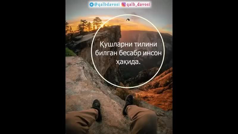Fozil_qori_sobirov_1BxfHzwzggLG