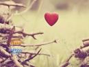 Благотворительная ярмарка Сердце подскажет