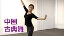 在美国如何学习中国古典舞? 舞蹈教学Chinese Classical Dance