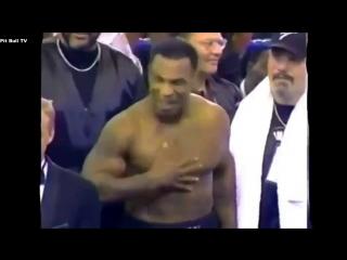Pit Bull TV - Mad Tyson