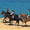 Прогулки на лошадях ТОКСОВО! Лучший выбор!