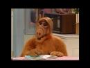 Alf Quote Season 4 Episode 5_Значок