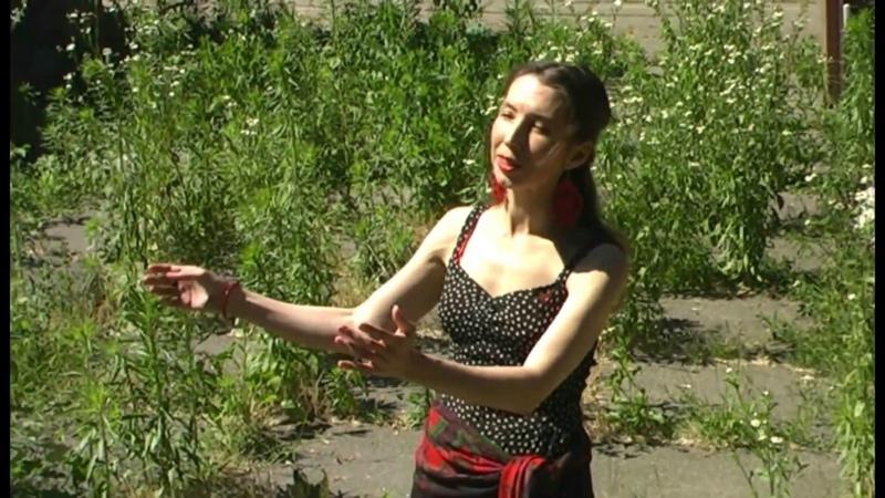 Відеопоезія: Ми мовою птахів... (автор Кася Ясна)