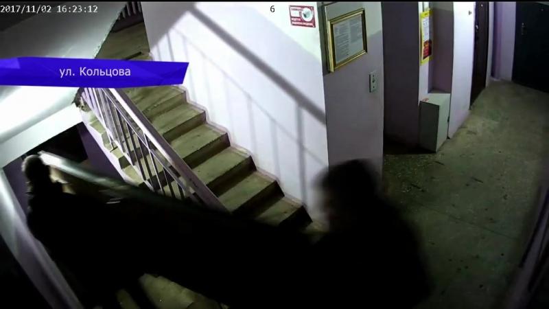 Видеорегистратор. Похитили дверь на ул.Кольцова. 22.03.2018