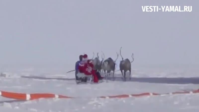 Ямальский Дед Мороз