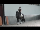 How_To_Train_Your_Horse_Dressage_Mastery_TV_Ep_147.mp4
