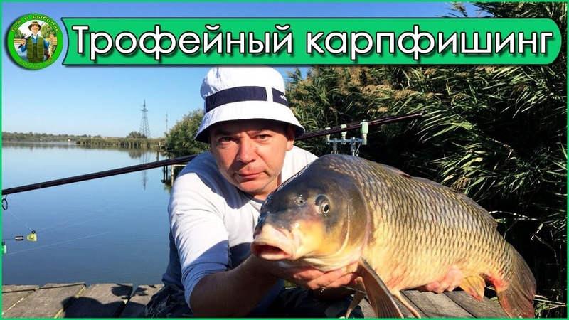 Трофейный карпфишинг 2018 на водоеме 3 КАРАСЯ