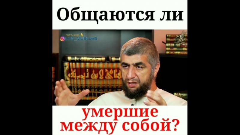 Life_muslims?utm_source=ig_share_sheetigshid=ochgwsond0pu.mp4