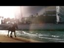 Stive Morgan - Rain Will Tell All - HD - [ VKlipe ]