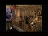 Raw 08.28.2006 - Vince McMahon invited hotel room service in and they delivered a cage with a couple of chickens (cocks) inside.