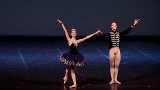 Balletto di Verona Gran Galà di Danza Teatro Filarmonico novembre 2016