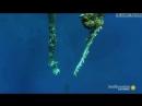 Vidmo_org_Dajjver_spas_kitovuyu_akulu_ot_rybolovnojj_seti_a_akula_pomogla_A_Whale_Shark_Cooperates_with_the_Diver_Saving_Him_854
