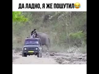 Слон шутник 🐘