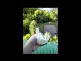 Пластмассовый горшок ломать руками