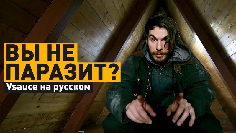 Можете ли Вы быть паразитом | Vsauce3 на русском
