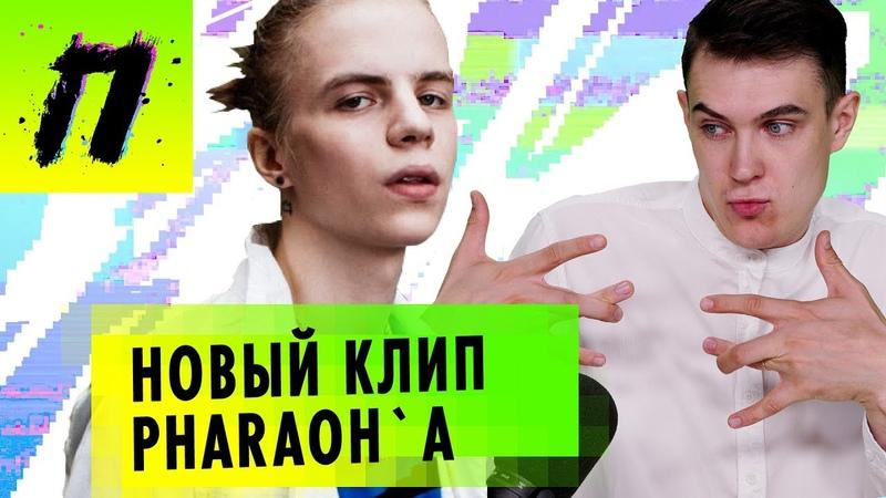PHARAOH - Smart, Wylsacom в сомнительной рекламе, Избили актера из фильма Такси   ПУШКА NEWS