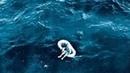 В 1961 году эту маленькую девочку нашли в море, спустя годы она раскрыла невероятную правду