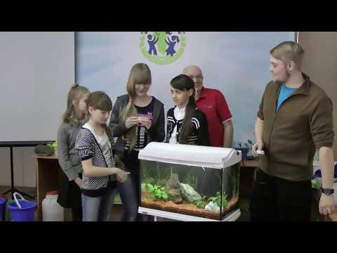 Мастер-класс по аквариумистике в Кемерово. 2017г.