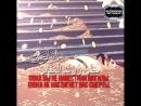 Передают со слов Ибн Аббаса и Анаса бин Малика (رضي الله عنهما), что посланник А ( 640 X 640 ).mp4