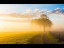 Follow The Sun (traduzione Italiana)