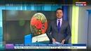 Новости на Россия 24 • ЧЕ по гандболу готовы принять Россия и Белоруссия