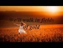 Sting Fields Of Gold (Lyrics)