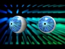 Jono Fernandez Colours of Conscience Fretwell Mix