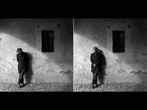John Parish - How animals move (Album)