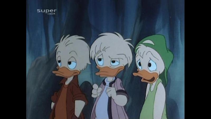 29.Quack Pack - Gator-Aid