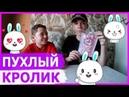 CHUBBY BUNNY CHALLENGE / ПУХЛЫЙ КРОЛИК