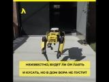 Boston Dynamics отдаёт робопсов в хорошие руки