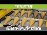 Фабрика мороженого в Екатеринбурге