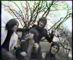 Kinks - Starstruck