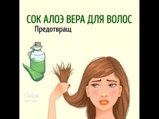 Женские Хитрости () натуральные средства для красоты