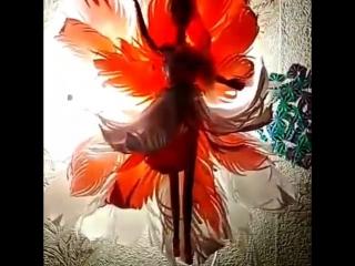 Светильничек Лилия.
