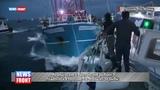Французские и британские рыбаки подрались в проливе Ла Манш из за рыбы