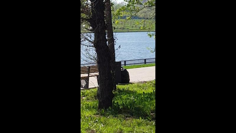 парк 850 летия москвы
