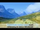 «Шмон», Воровайки_ караоке и текст песни