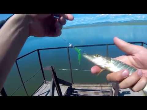 Утренняя Рыбалка На Озере.Половил Окушка