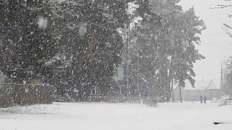 Валит снег. Красота