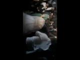 Свадьба груни