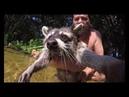 Мимишные еноты на реке