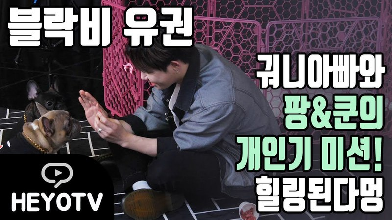 180420 180420 Heyo TV U-Kwon's Private Life S2 Ep 1 (U-Kwon with dogs)