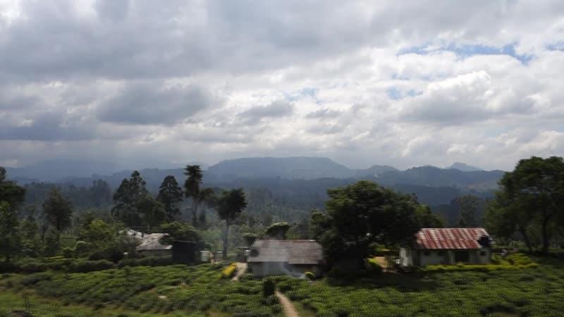 Дорога из Нувара-Элии в Канди