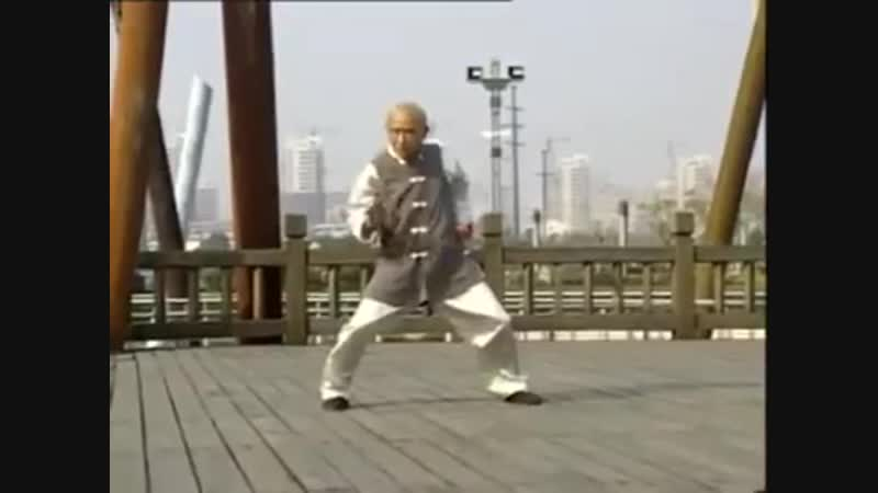 He is 90 years old but he is still fit enough to perform the Hung Gar Tiger Crane form excellently