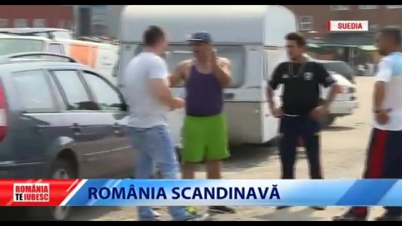 Cum strang bani tiganii romani in tarile scandinave